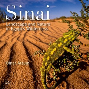 """Sinai: Landscape and Nature in Egypt's Wilderness"" by Omar Attum"