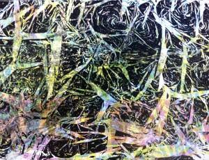 """Forest Wetland"" by Brian H. Jones"