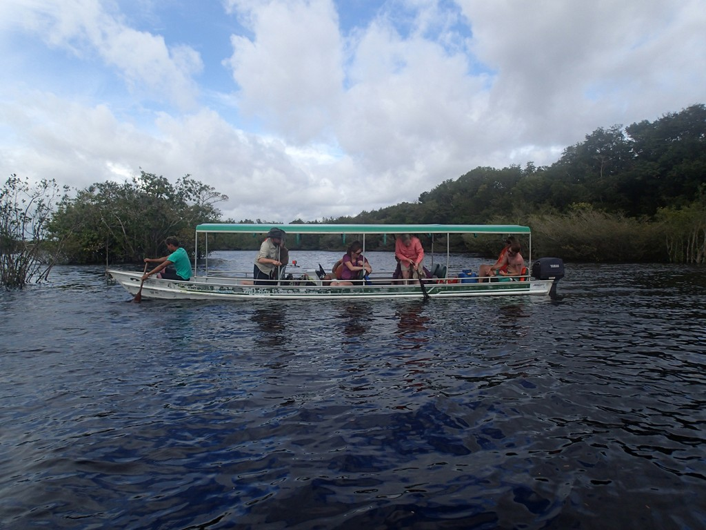 Members of the IU Southeast Field Biology program explore the Amazon as part of the program's 2015 trip.