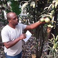 Chemist Victor Waingeh unlocks secrets of traditional medicine in his native Cameroon